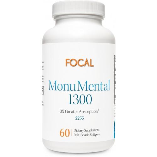 MonuMental 1300